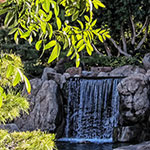 Photo of the Week – Japanese Friendship Garden Waterfall