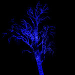 "Zoolights ""Blue"" Tree"