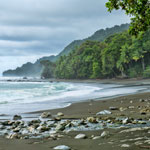 Wonderstruck Hiking in Corcovado National Park